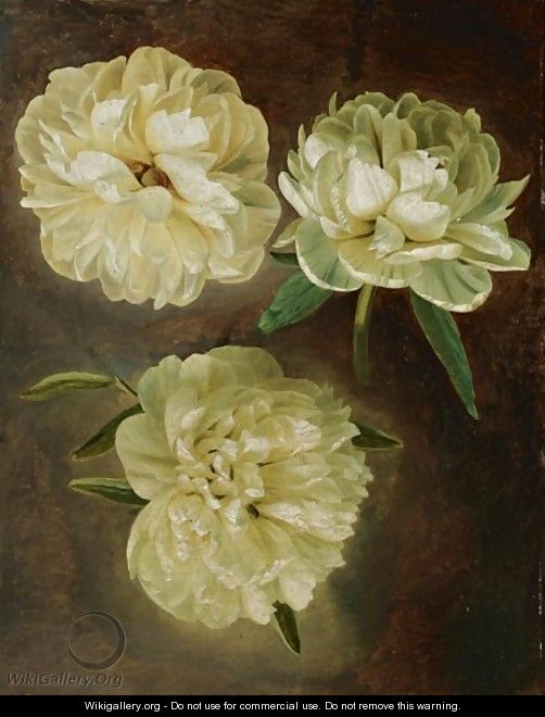 Painting Peonies In Acrylic