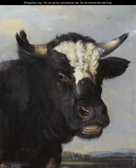 Relatively Head Of A Bull - (after) Paulus Potter - WikiGallery.org, the  LD17