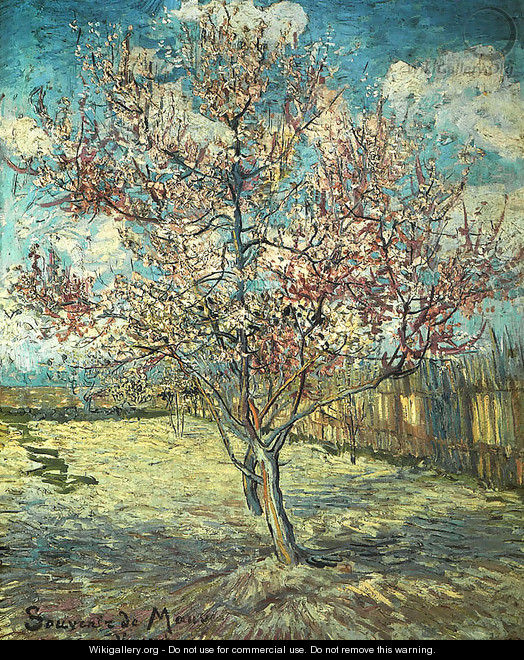 Pink peach tree in blossom reminiscence of mauve for Van gogh paintings locations