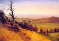 Newbraska Wasatch Mountains - Albert Bierstadt