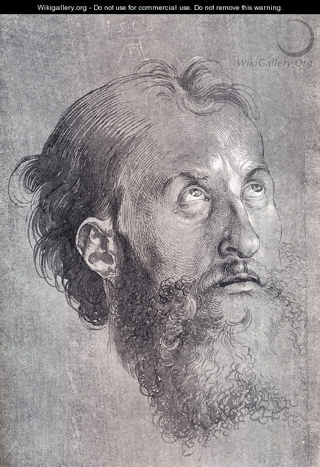 Head Of An Apostle Looking Upward - Albrecht Durer