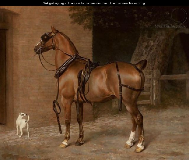 A Carriage Horse - Jacques Laurent Agasse