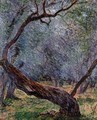 Study Of Olive Trees - Claude Oscar Monet