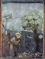 Legend of St Francis- 15. Sermon to the Birds 1297-99 - Giotto Di Bondone