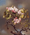 Branch Of Apple Blossoms Against A Cloudy Sky - Martin Johnson Heade