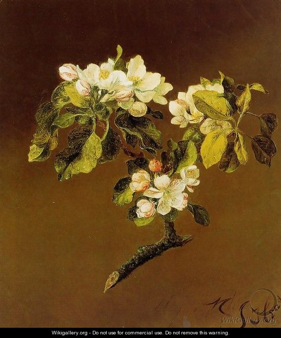 A Spray Of Apple Blossoms - Martin Johnson Heade