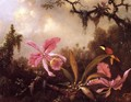 Orchids And Crimson Topaz Hummingbird - Martin Johnson Heade