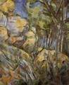 Rocks Near The Caves Above The Chateau Noir - Paul Cezanne