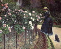 Roses Garden At Petit Gennevilliers - Gustave Caillebotte