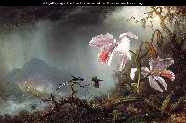 Two Fighting Hummingbirds With Two Orchids - Martin Johnson Heade