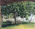 View From Hut At Vaiala In Upolu Bread Fruit Tree War Drums And Canoe Nov 19th 1890 - John La Farge