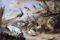 Birds on a Riverbank 1655 - Jan van Kessel