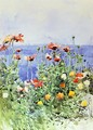Poppies, Isles of Shoals II - Frederick Childe Hassam