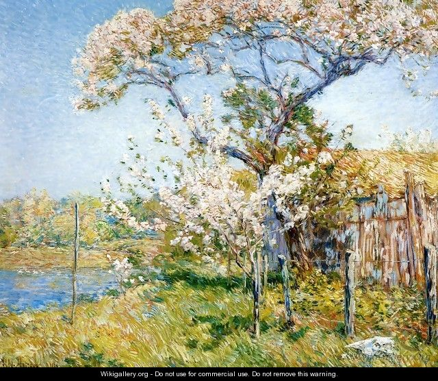 Apple Trees in Bloom, Old Lyme - Frederick Childe Hassam