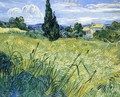 Wheatfield with Cypress - Vincent Van Gogh