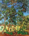 The Grounds of the Asylum - Vincent Van Gogh