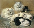 Cats and Kittens - Henriette Ronner-Knip