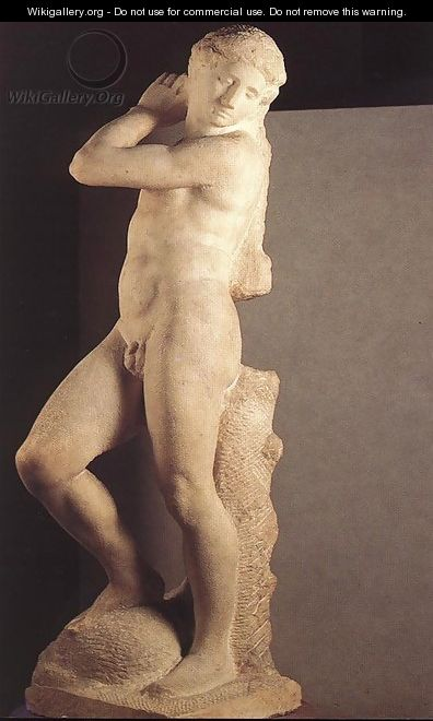 David-Apollo [detail: 1] - Michelangelo Buonarroti