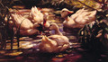 Ducks in a Forest Pond - Alexander Max Koester