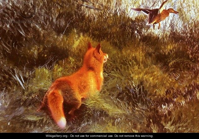 Eluding The Fox - Bruno Andreas Liljefors