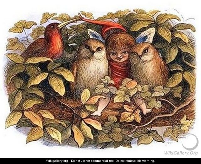 Fairy and Owls - Richard Doyle
