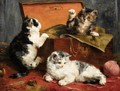 Kittens at Play - Charles van den Eycken