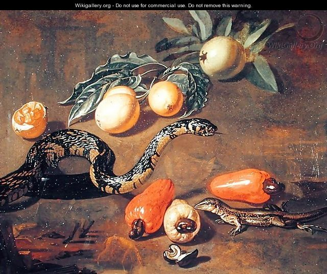 Still Life of Fruits from Surinam and Reptiles - Dirk Valkenburg