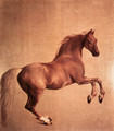 Whistlejacket 1761-62 - George Stubbs
