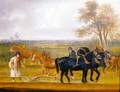 Cruckton ploughing match with four teams of horses, 1813 - Thomas Weaver