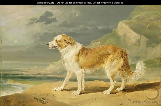 Rough-coated Collie, 1809 - James Ward