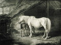 Primrose and Foal, from Celebrated Horses, a set of fourteen racing prints published by the artist, 1823-24 - James Ward