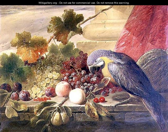 Still life of fruit and a parrot, 1855 - Thomas C. Ward