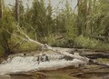 Forest Stream - Charles Henry Gifford