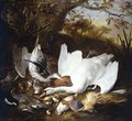 Still Life of Swan and Game in a Landscape - Jan de Wit