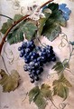 Black Grapes - James Sillett