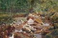 A Rocky Stream Overhung with Trees - John G. Sowerby