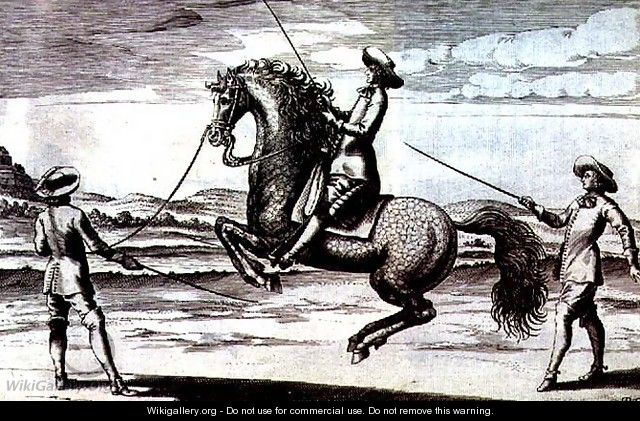 Illustration of a horse en Croupade from New Treatise for Breeding Horses written by Winters, Stuterey and Reit-Schul, pub. 1672 - Peter Paul Troschel