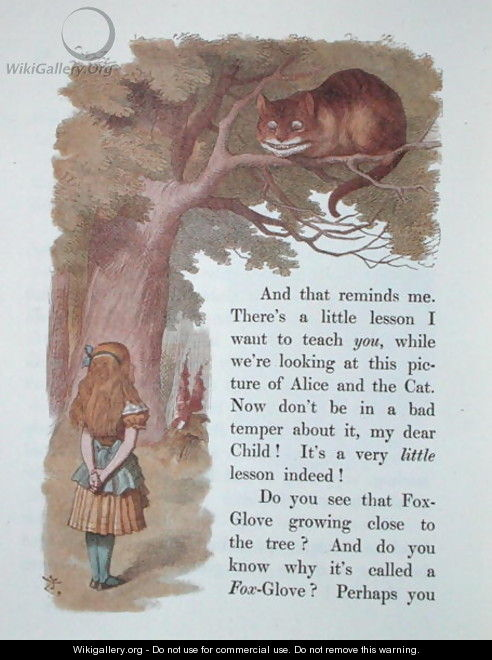 Alice and the Cheshire Cat, illustration from Alice in Wonderland, published in London, 1889 - Emily Gertrude Thomson