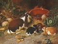 Fancy Rabbits, a Doe with her Young, 1863 - John Frederick Herring Snr