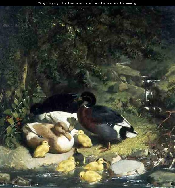 Ducks and Ducklings (2) - John Frederick Herring Snr