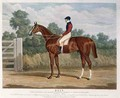 'Elis', the Winner of the Great St. Leger Stakes at Doncaster, 1836 - John Frederick Herring Snr