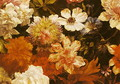 Detail of Flowers - Michelangelo Cerquozzi