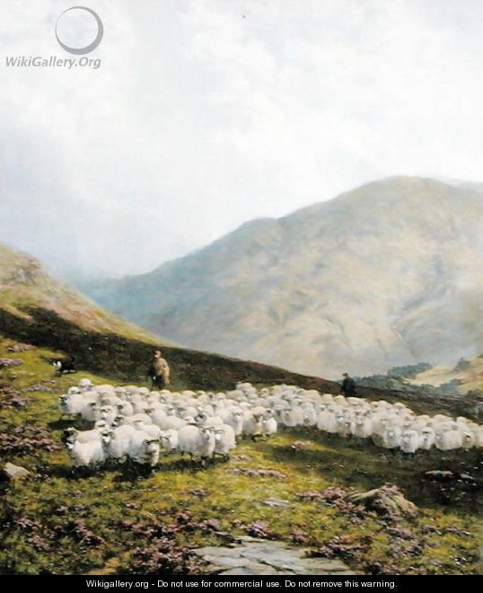 Shepherd and Sheep, Perthshire - Dixon Clark