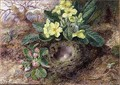 Still Life with Primroses and Birds Nest - George Clare