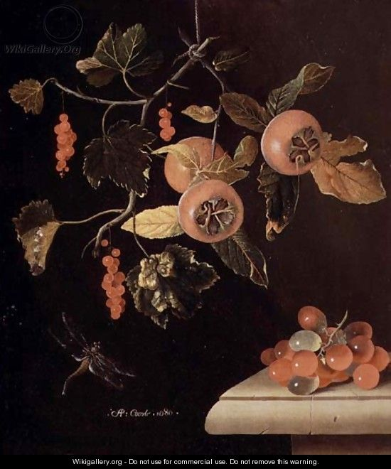 Still Life of Medlars, Redcurrants, Grapes and a Dragonfly, 1686 - Adriaen Coorte
