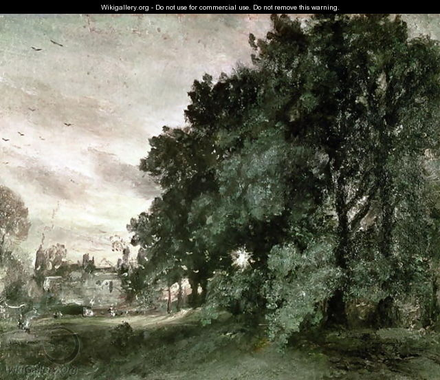 Study of Trees - John Constable