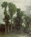Trees at Hampstead - John Constable