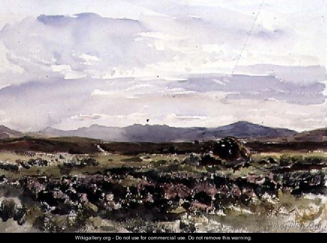 On the Hills, Dolwyddelan, North Wales - Thomas Collier