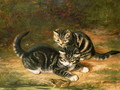 Kittens - Horatio Henry Couldery