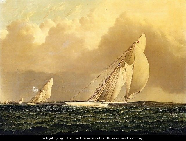 Yacht Race in New York Harbor - James E. Buttersworth